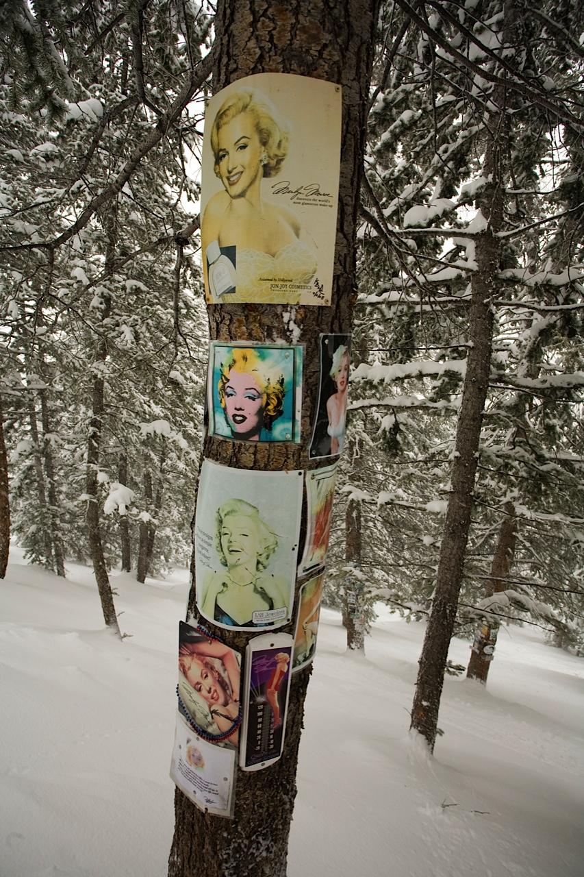 Aspen-Marilyn-Monroe-shrine
