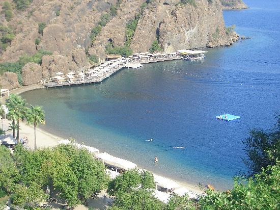 D-Hotel-Main-beach