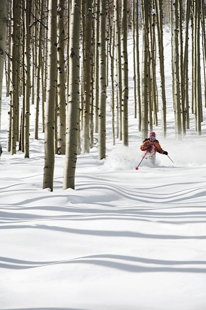 Park-City-Aspen-Tree-Skiing