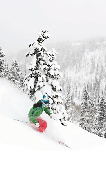 Park-City-Powder-Tree-Skiing