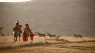 Lewa Safari Camp - Camel Trekking
