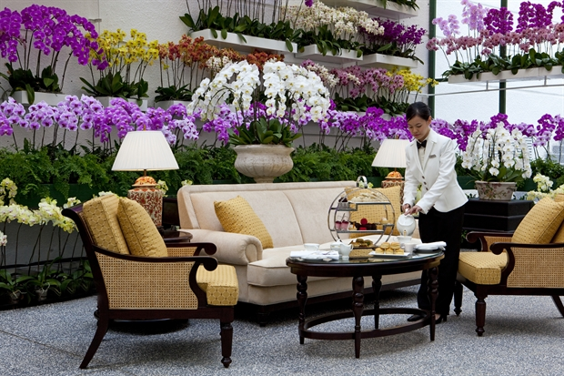 Majestic_orchid_room