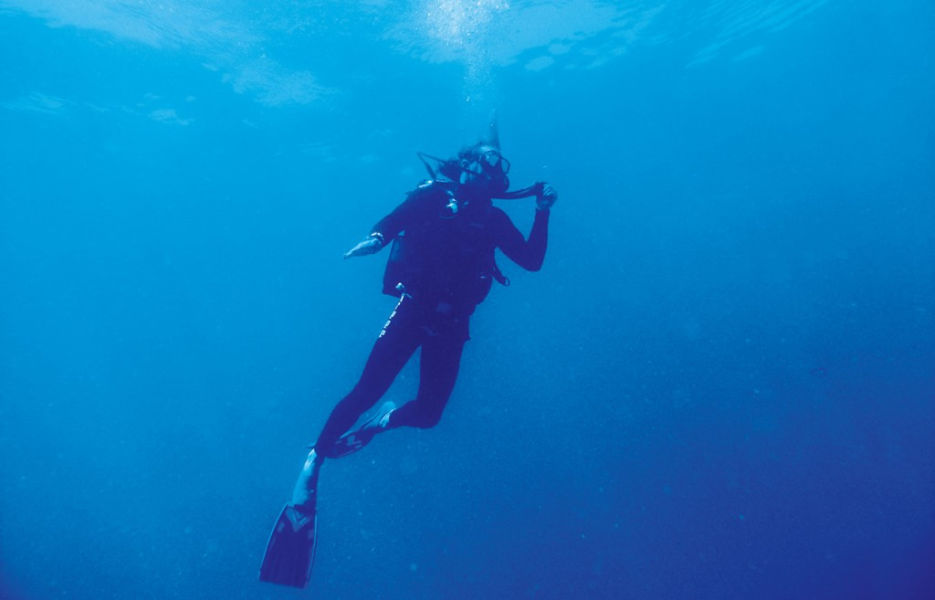 Indigo-lodges-diving-vamizi