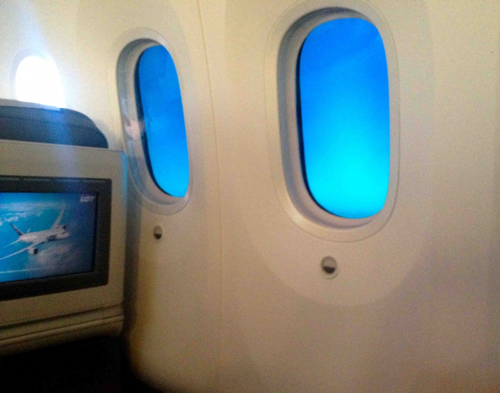 LOT Airline windows