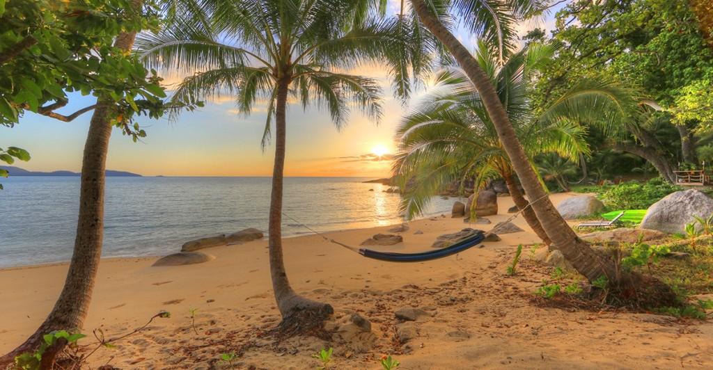 Bedarra Hammock Sunrise PB