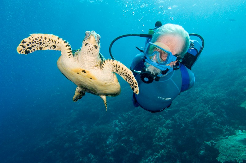 JMC-Diving