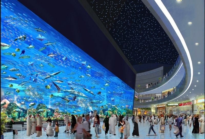 The dubai mall aquarium
