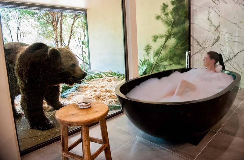 Jamala_bath with sun bears