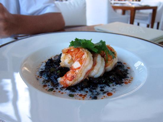 king-prawn-risotto-Kayuputi